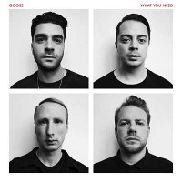 Goose — What You Need (2016)