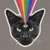Never Shout Never — Black Cat (2015)