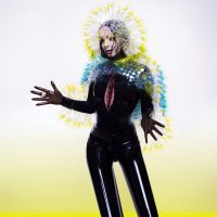 Рецензия на Björk — Vulnicura (2015)