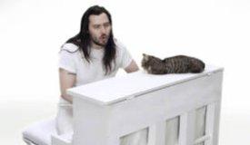 Andrew W.K. спел с самым популярным котом Интернета