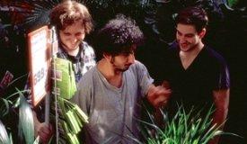 Pompeya выпускают дебютный альбом