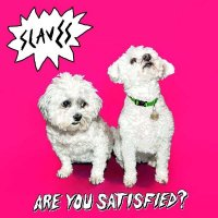 Slaves — Are You Satisfied? (2015)