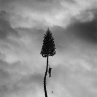 Manchester Orchestra — A Black Mile To The Surface (2017)