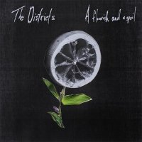 The Districts — A Flourish And A Spoil (2015)
