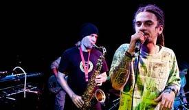 Reggae Festival