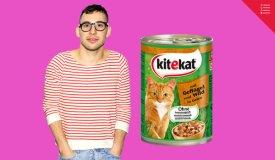 Угадай, группа или кошачий корм