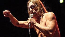 Iggy And The Stooges запишут альбом без Игги Попа?