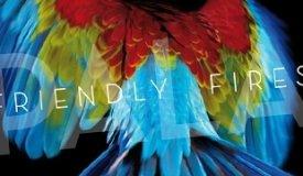 Friendly Fires выложили новый альбом в Интернет