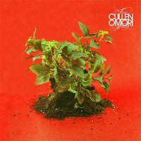 Cullen Omori — New Misery (2016)