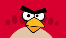 Slash записал заставку для Angry Birds