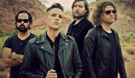 The Killers и вокалист New Order спели песню Joy Division на фестивале Lollapalooza
