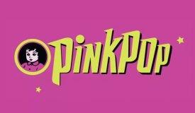На фестивале Pinkpop микроавтобус сбил насмерть человека