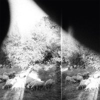 Godspeed You! Black Emperor — Asunder, Sweet And Other Distress (2015)