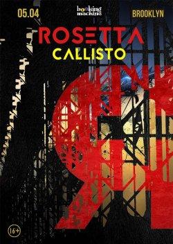 Rosetta, Callisto